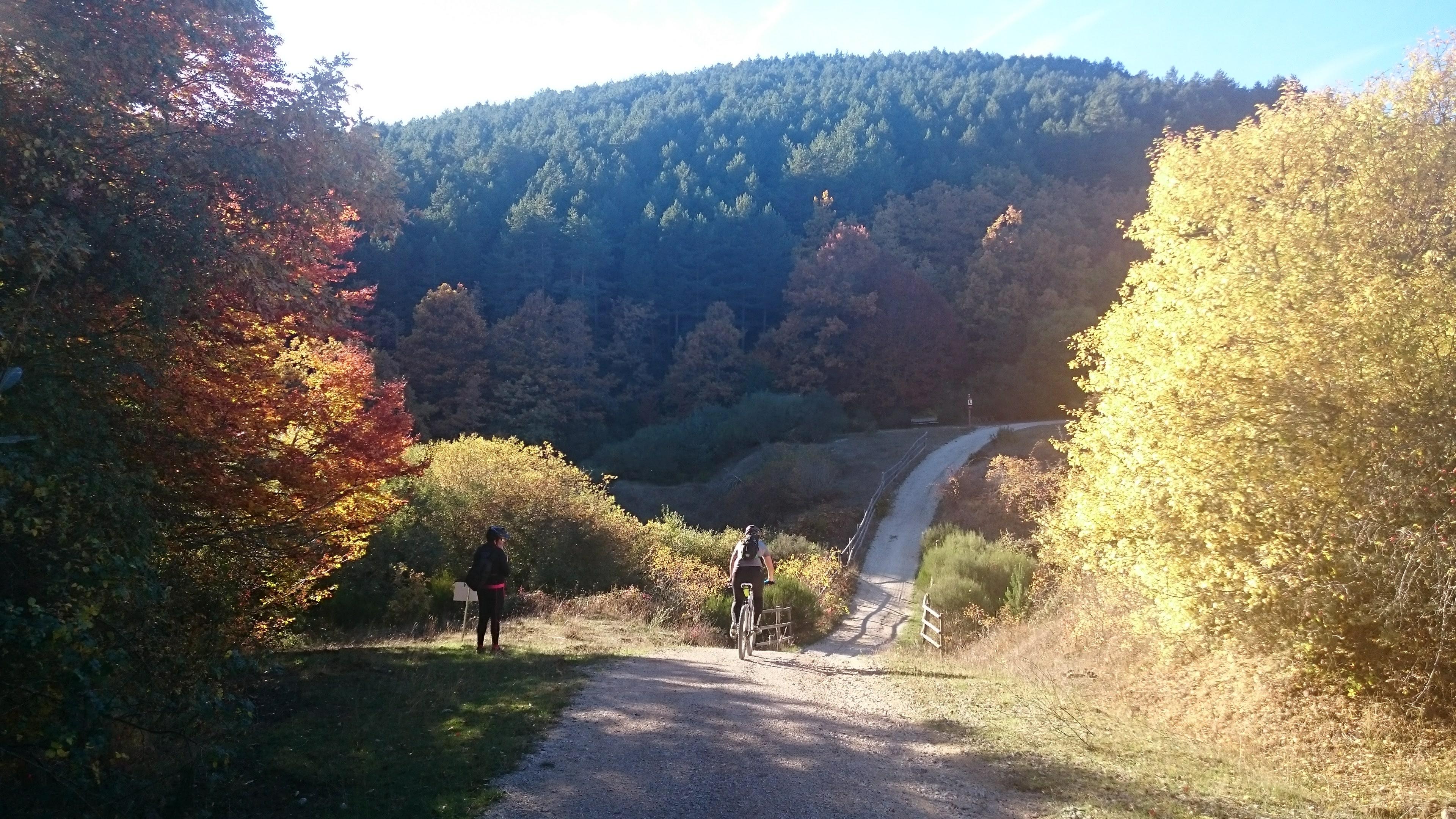 """Vias Verdes"" – vacanza in bicicletta in Spagna"