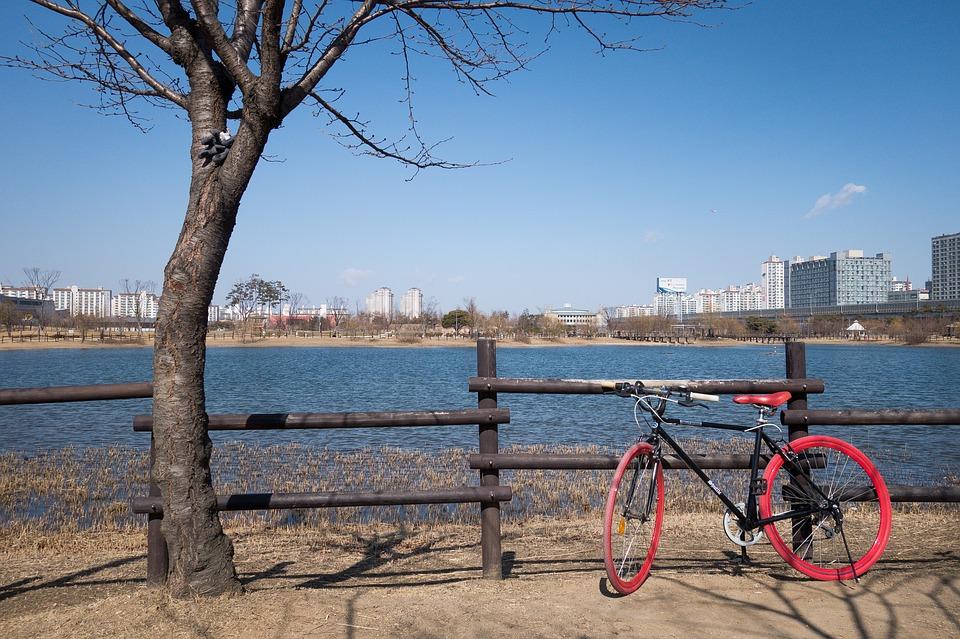 Come scegliere i copertoni invernali per la bici