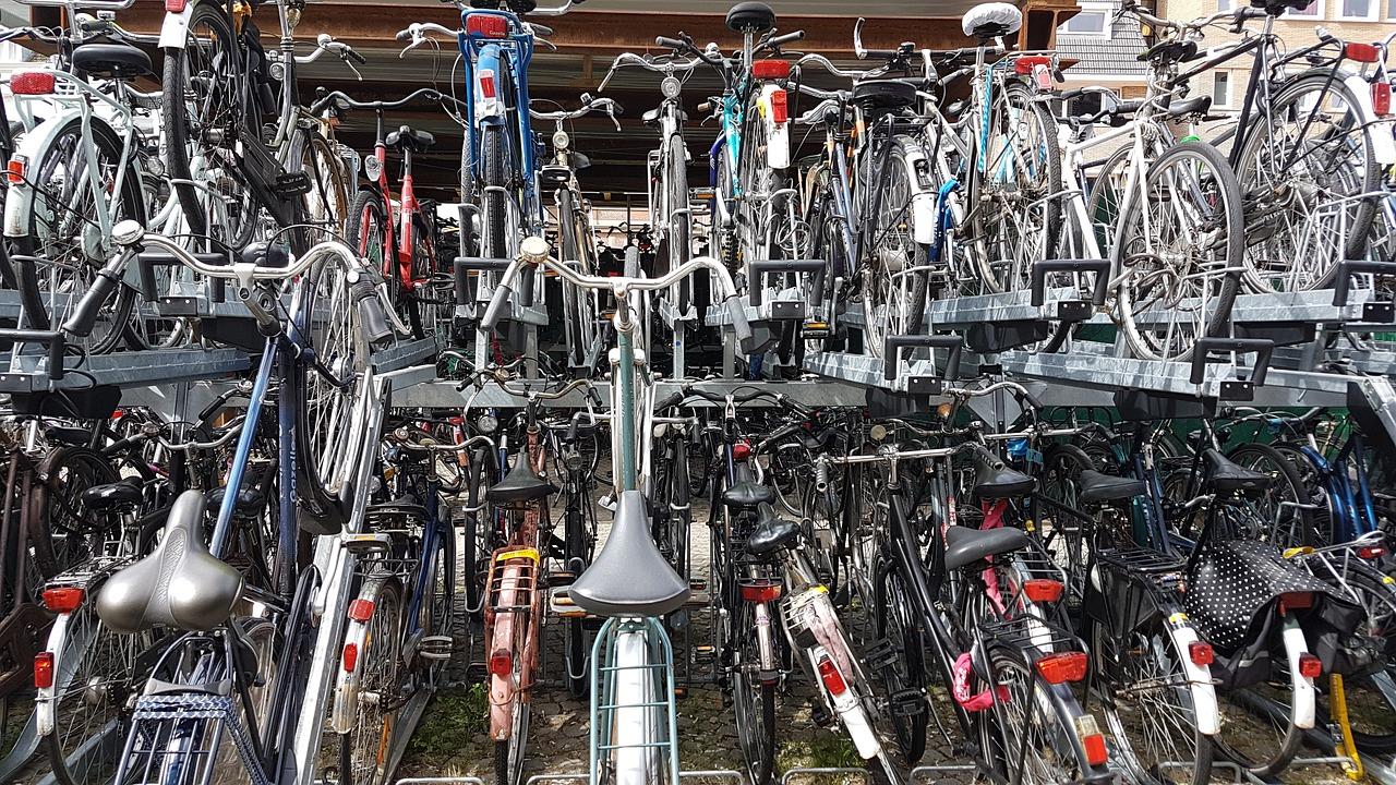 Conoscete tutte le tipologie di bici?