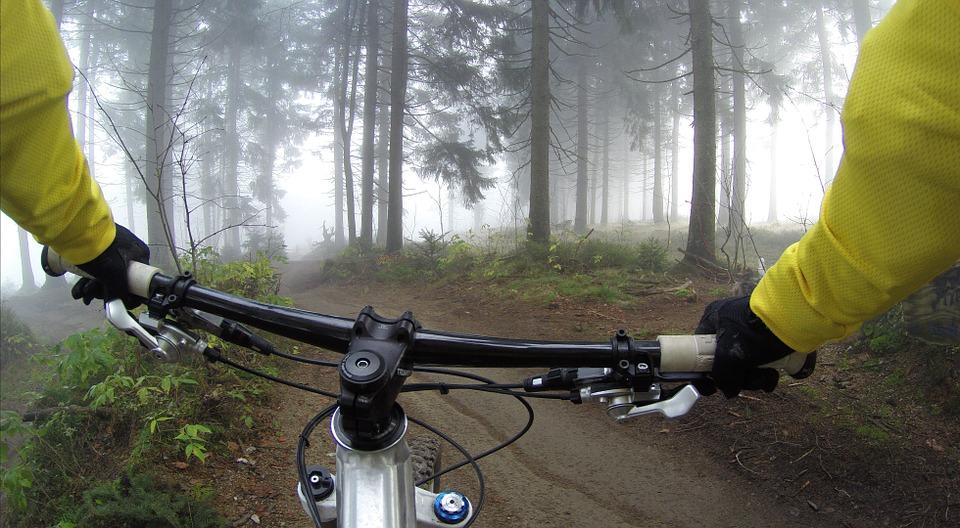 Il Casentino in mountain bike