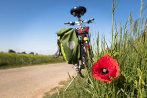 cycling-5178398_1280